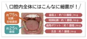 口腔内全体にはこんなに細菌が!