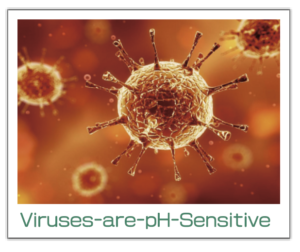 Virus are pH Sensitive